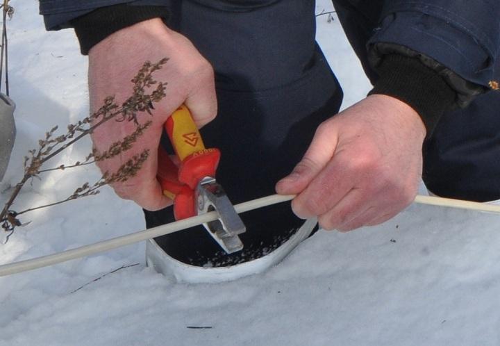 ВВологодской области мертвеца обнаружили настолбе линии электропередач