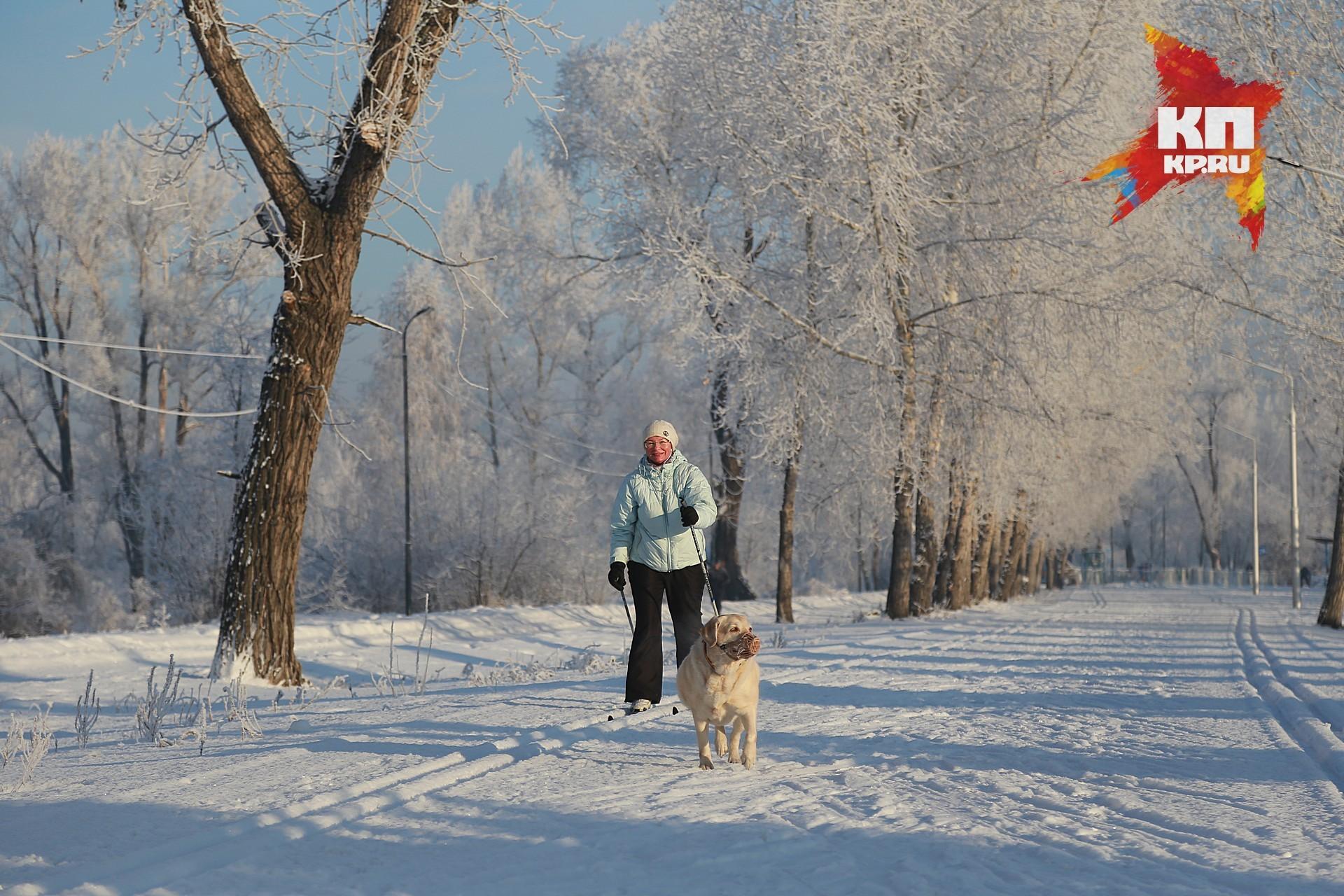 Впредстоящие выходные вХабаровске установится ясная итеплая погода