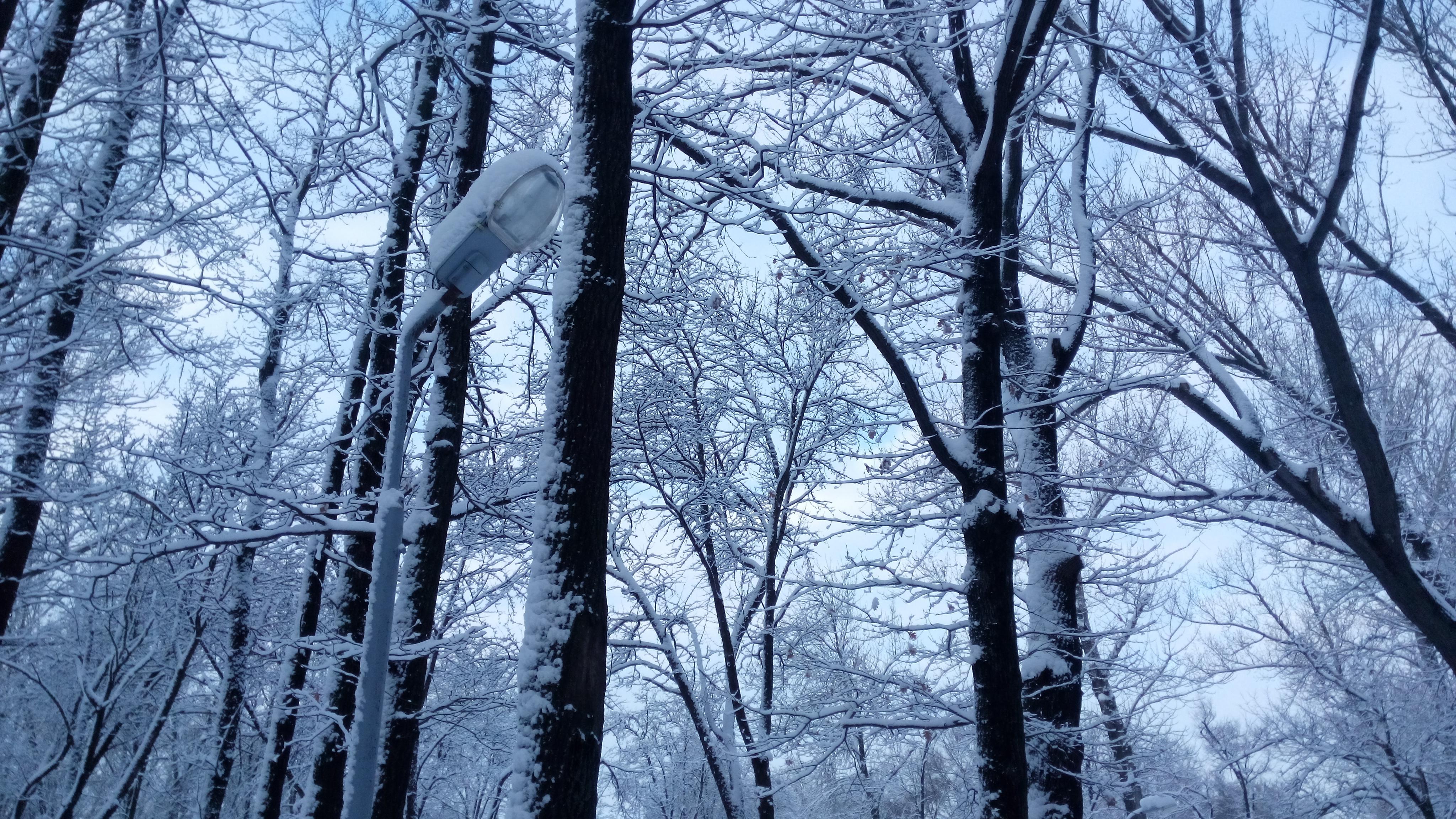 Белгородцев ждет аномально холодная погода
