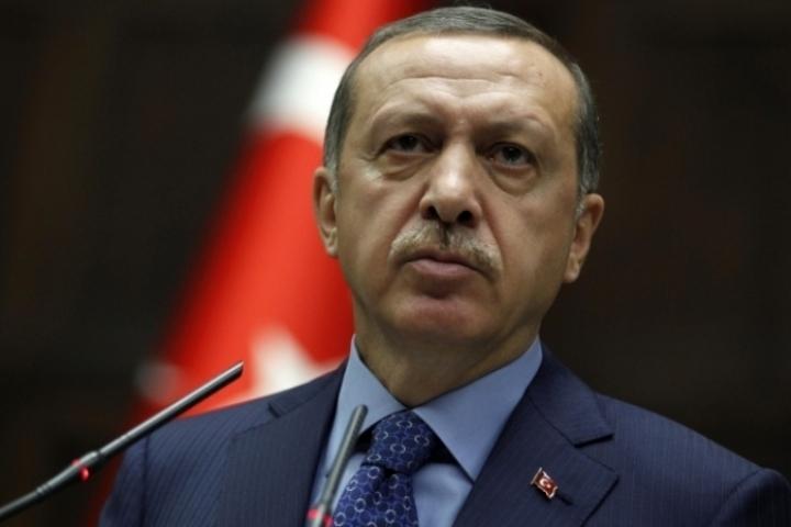 Эрдоган назвал «немецким шпионом» схваченного вТурции репортера Welt