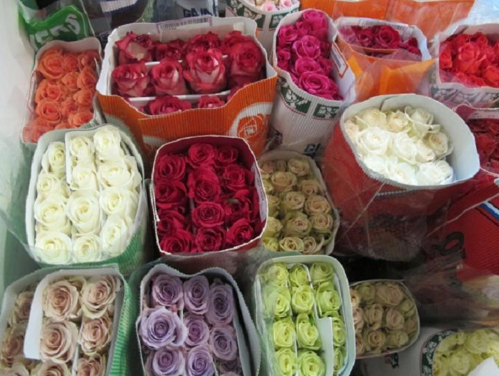 Россельхознадзор уничтожил 5 тыс. зараженных цветов впреддверии Женского дня