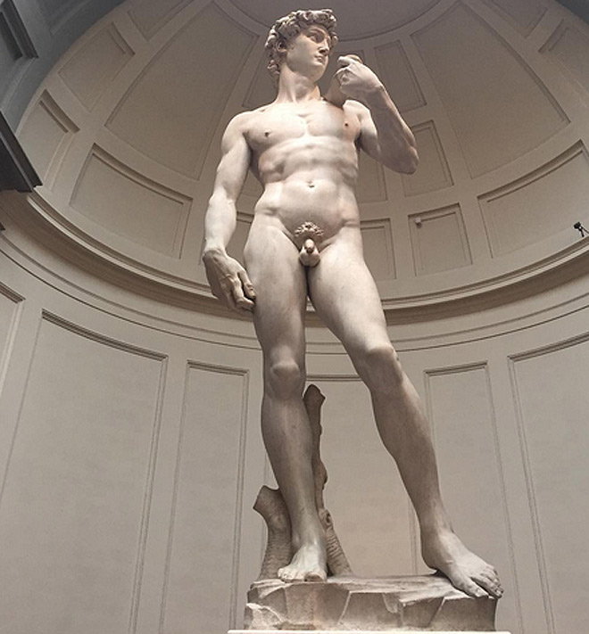 michelangelos david analysis essay Analyze michelangelo's david click through to watch this video on sessionsedu artists have represented humans in their work for thousands of years.