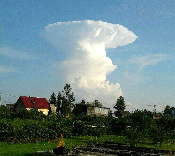 Испугавший граждан Кузбасса «ядерный гриб» сняли навидео