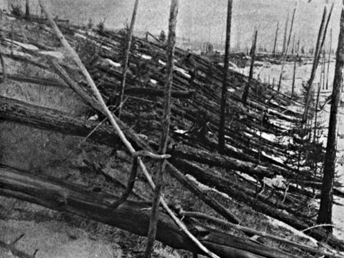 Еще вывал леса. Почему-то не все деревья упали