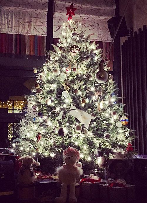 Санта уже дома Фото: СОЦСЕТИ