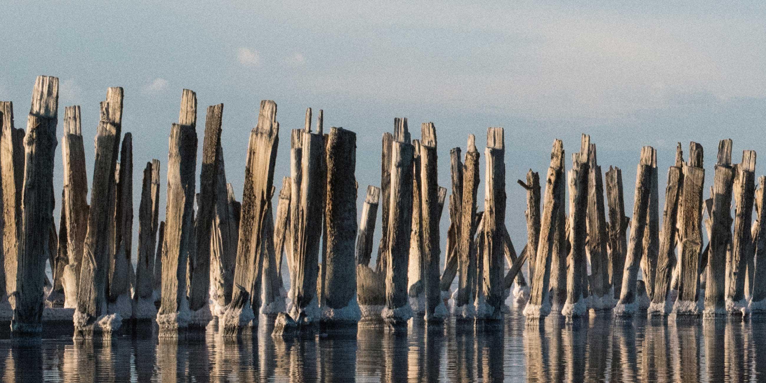 Красивые панорамные снимки хорошо получатся на деревянных плотинахФото: instagram.com/kate.hevan