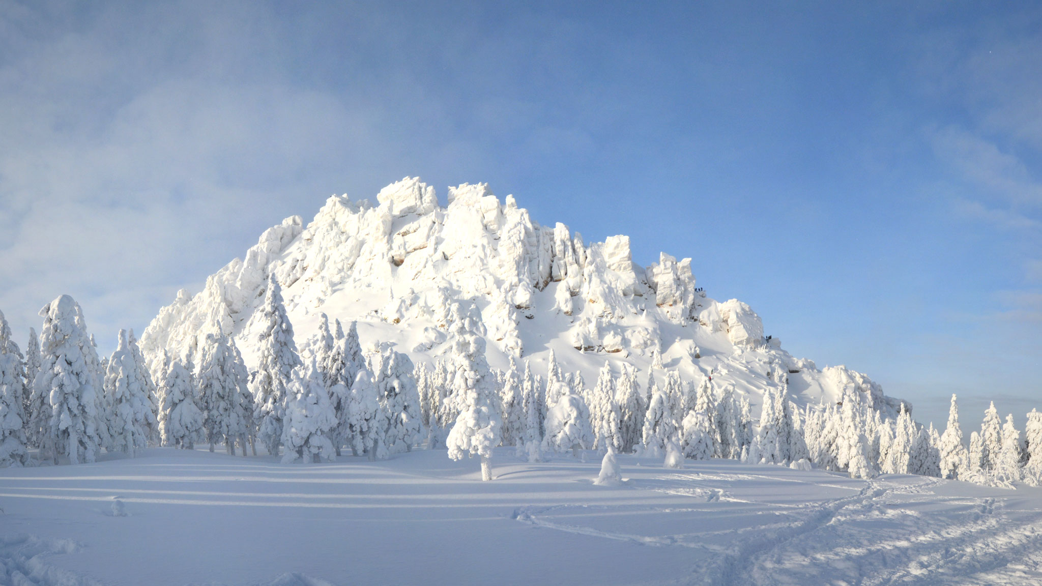 В какой части материка расположены уральские горы