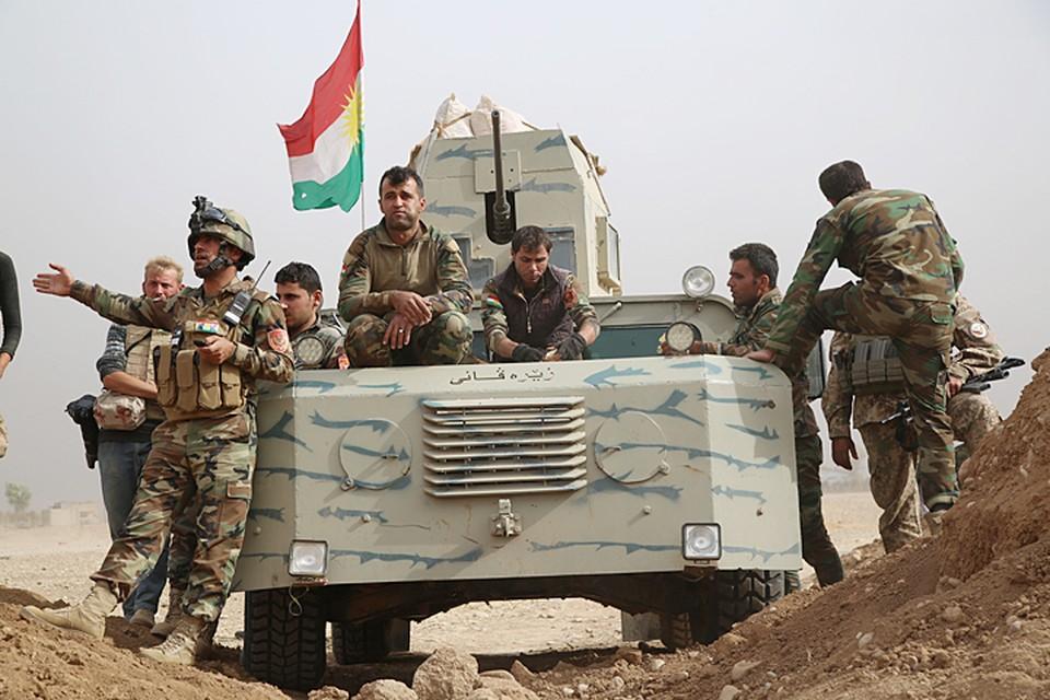 Американское командование рассматривает курдов как наиболее боеспособную силу в регионе