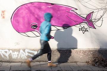 Игра «Синий кит» появилась в соцсетях Бразилии