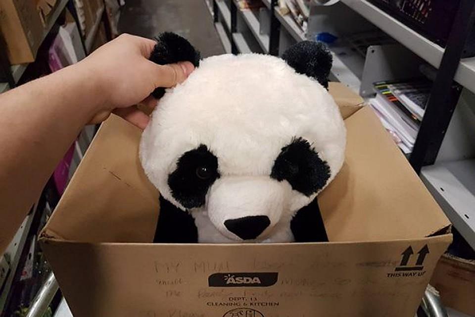 Порно с игрушечными пандами