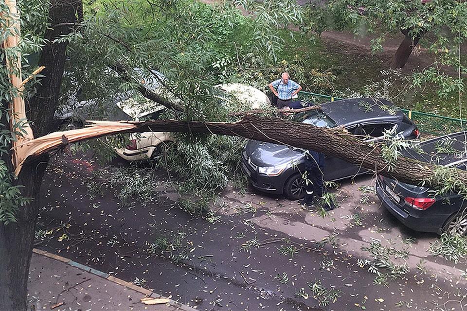 В результате сильных порывов ветра в столичном регионе пострадали 15 человек. ФОТО Инстаграм natali202707