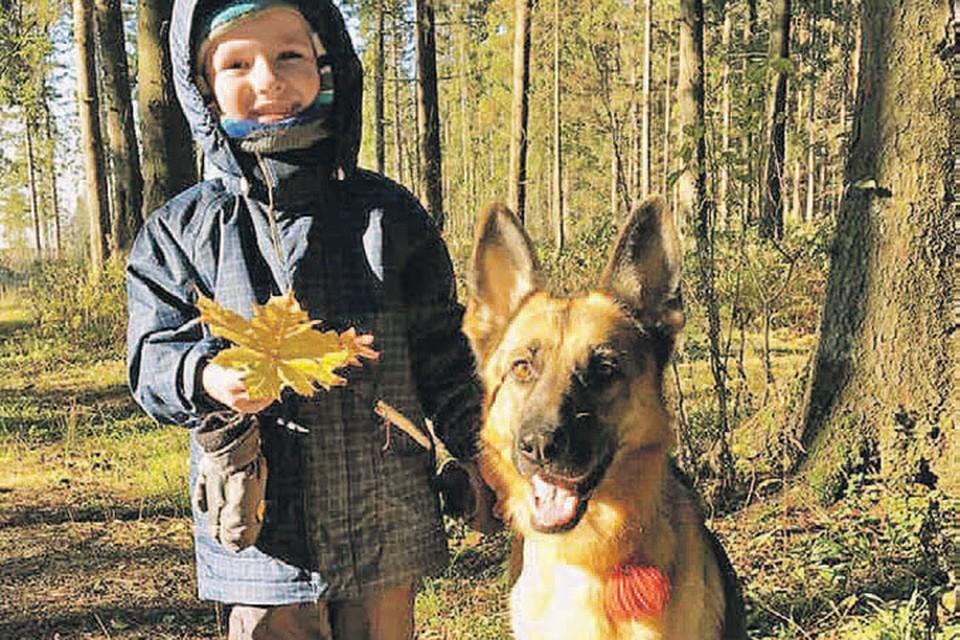 Овчарка Ханна была любимицей семьи Глушко, особенно дружил с ней сын Ирины Ваня. И эту замечательную псину до смерти залечили в ветклинике. Фото: Личный архив Ирины Глушко