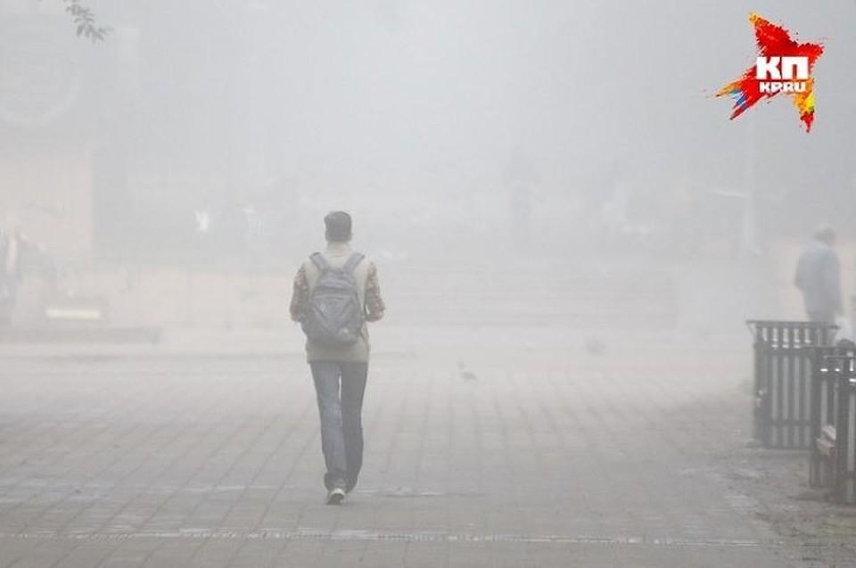 Гринпис нашел в воздухе Екатеринбурга опасные веществ