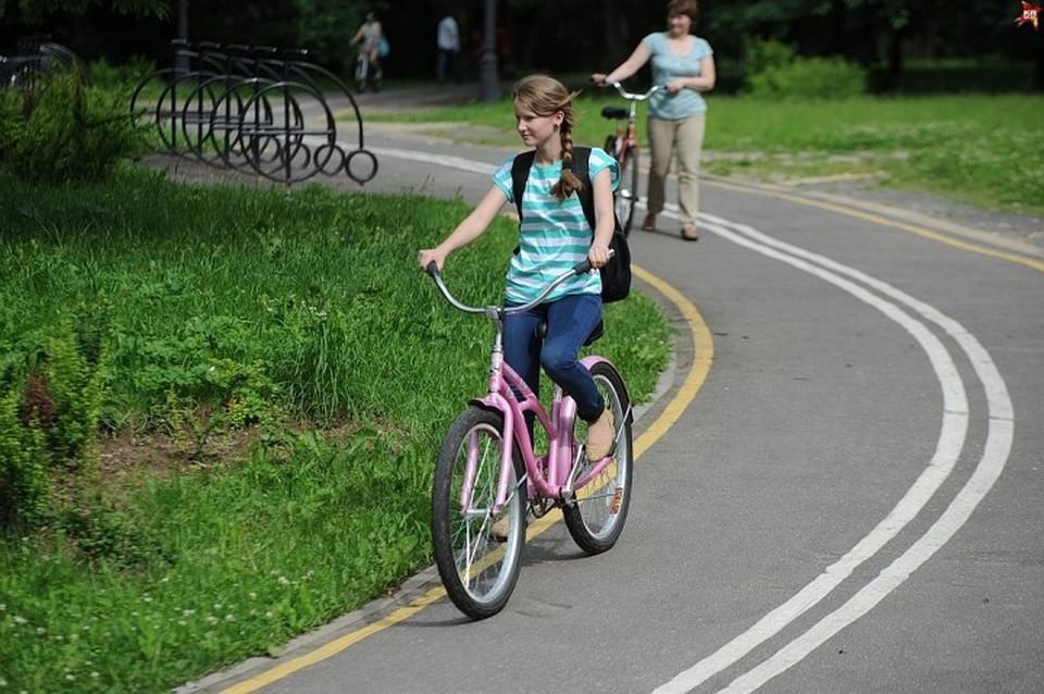 Концепцию о развитии велодвижения приняли в Беларуси