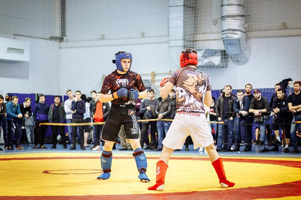 Панкратион для начинающих  Как на Кубани возрождают древнеолимпийский вид  спорта dd7ddf50a09