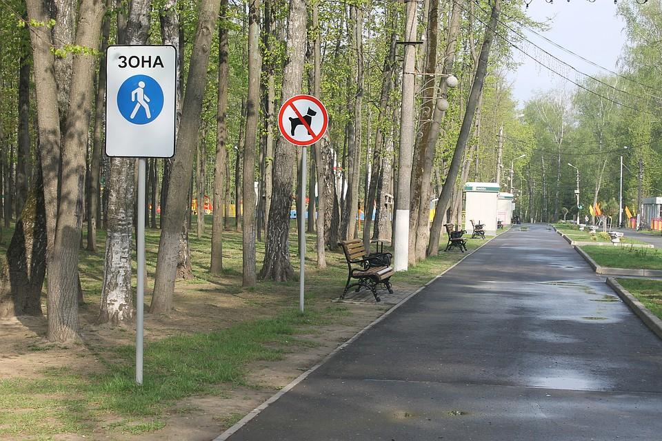 Юрист по семейному праву Подгоренская улица наследник по завещанию Комсомольская улица