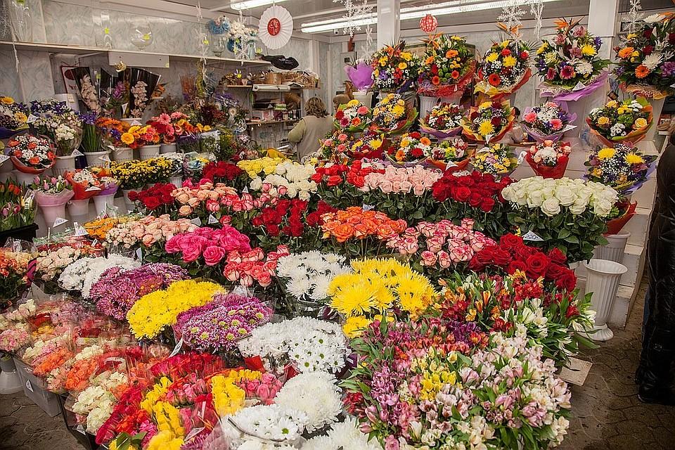 Цветов запорожье, оптовые рынки цветов адреса