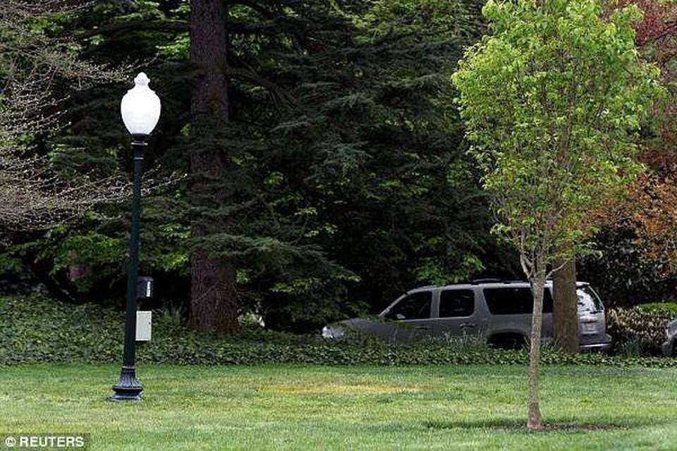 Посаженный Трампом и Макроном саженец дуба загадочным образом исчез с лужайки Белого дома