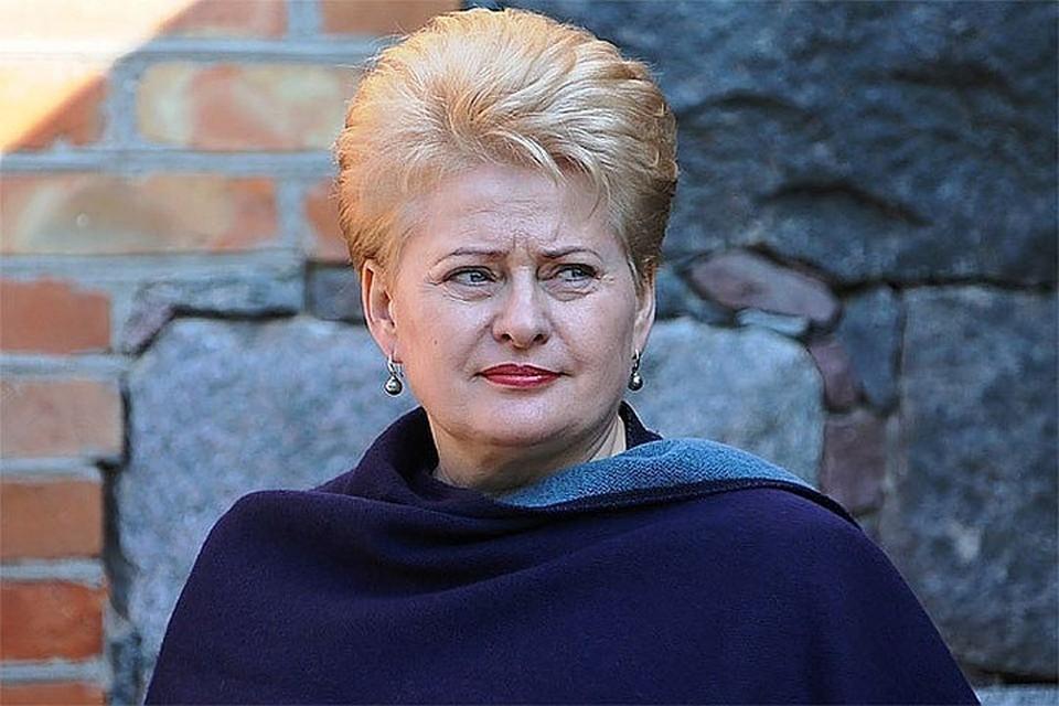 Президент Литвы Даля Грибаускайте Фото president.lt