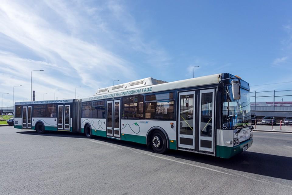 Транспортное обслуживание чемпионата обеспечат 244 автобуса, использующих в качестве топлива природный газ. Фото А. Савельевой.