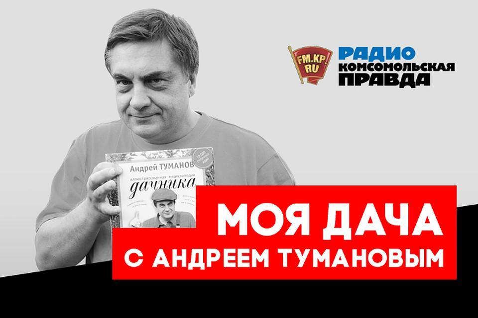 russkiy-eroticheskiy-seks-po-telefonu-dialog-demonstratsiya-paren