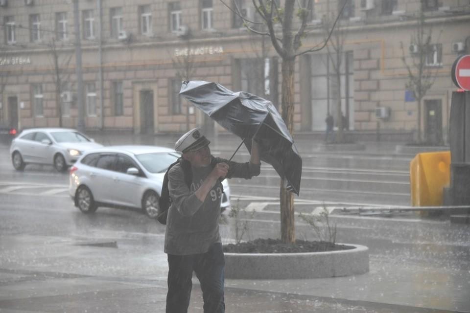 Во вторник, 19 июня, ожидается кратковременный дождь, град, гроза и порывы ветра до 15 м/с.