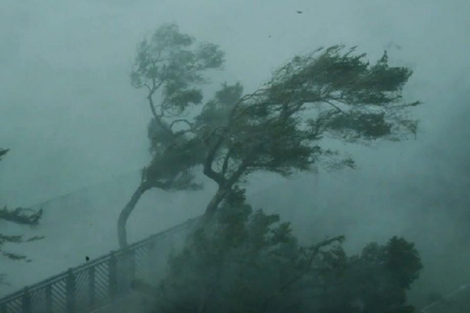 Жертвами тайфуна в Китае стали 400 человек.ФОТО: стоп-кадр с видео