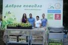 Добрый Ростов: в честь Дня города жителей южной столицы накормили повидлом из двух тонн яблок