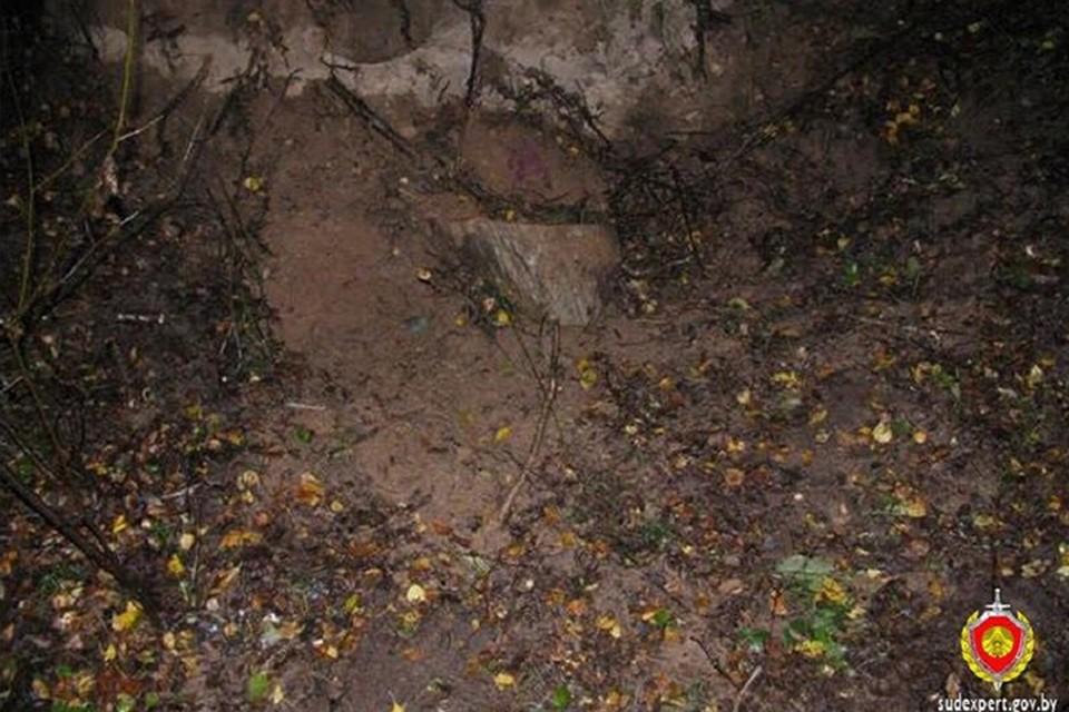 28-летнюю Светлану, которую убили из-за квартиры, зарыли в лесу, когда она была еще жива. Фото: УКГСЭ по Витебской области.