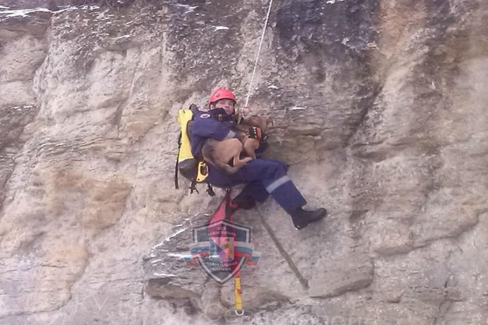 В службу спасения позвонил неравнодушный местный житель. Фото: пресс-служба «Центра обеспечения мероприятий гражданской защиты Севастополя»