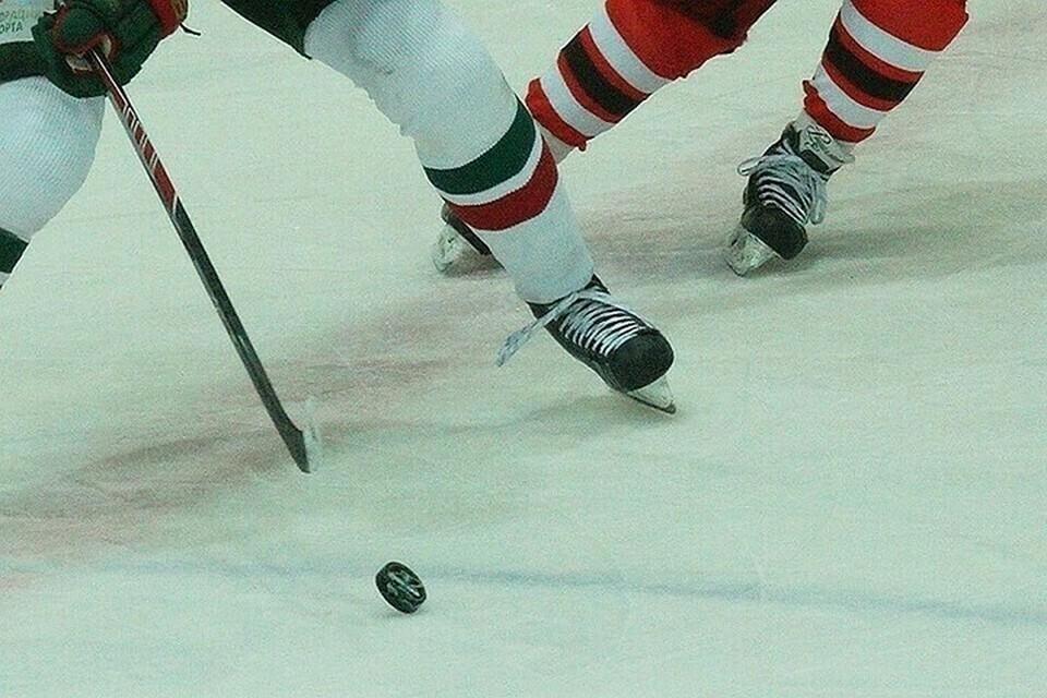 В Сочи сборная России по хоккею проведет два матча