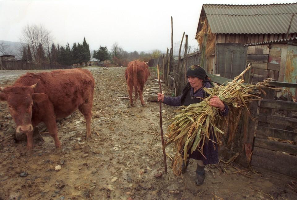 Женщинам, работающим в сельской местности, могут увеличить продолжительность рабочего дня