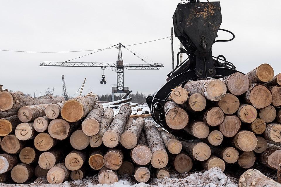 Бывшего губернатора Хабаровского края задержали в рамках расследования «лесного дела».
