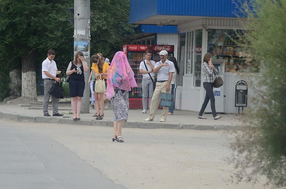 68628def137 Началось  в Волгограде появилась первая мошка