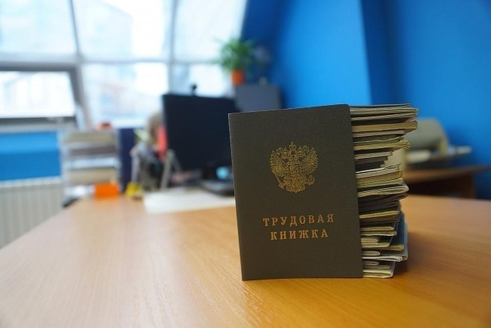 С 2020 года в России может заработать система электронных трудовых книжек