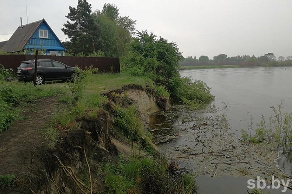 Река быстро сокращает границы дачного участка. Фото: sb.by.