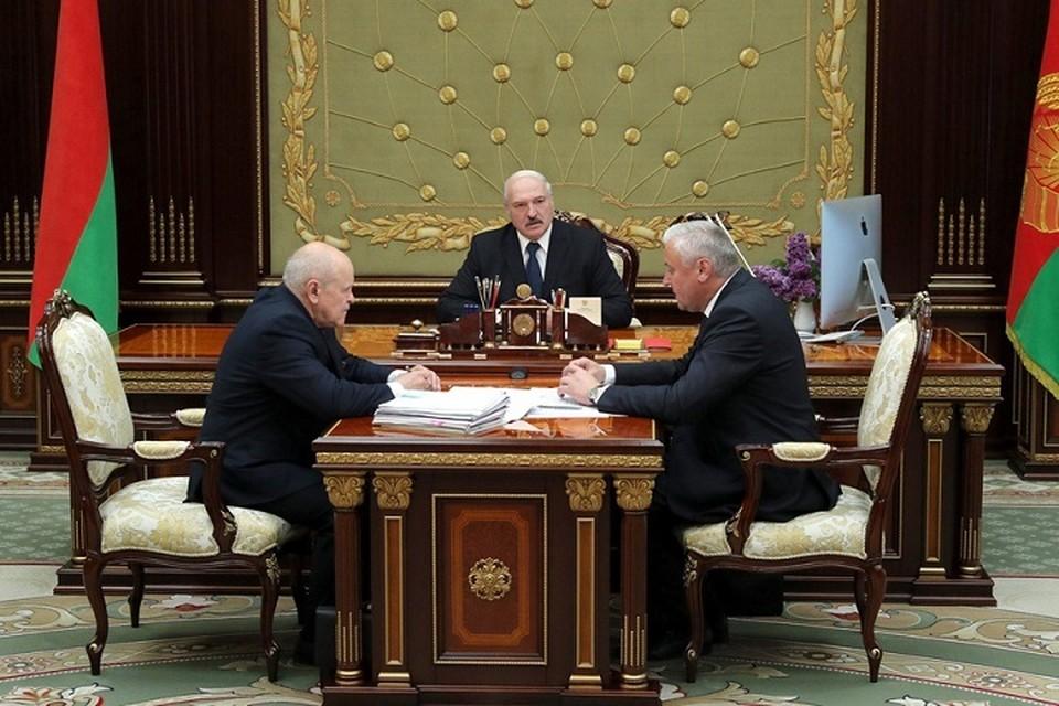 Александр Лукашенко выслушал доклад о повышении эффективности использования лесных ресурсов. Фото: belta.by.