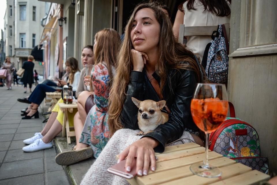 Летние кафе в Москве в 2019 году: Куда жаловаться на нарушения, какие документы понадобятся
