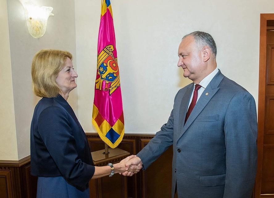 """Президент Молдовы - послу Великобритании в Молдове: """"Легитимные парламент и правительство сохранят все свои обязательства перед зарубежными партнерами"""""""