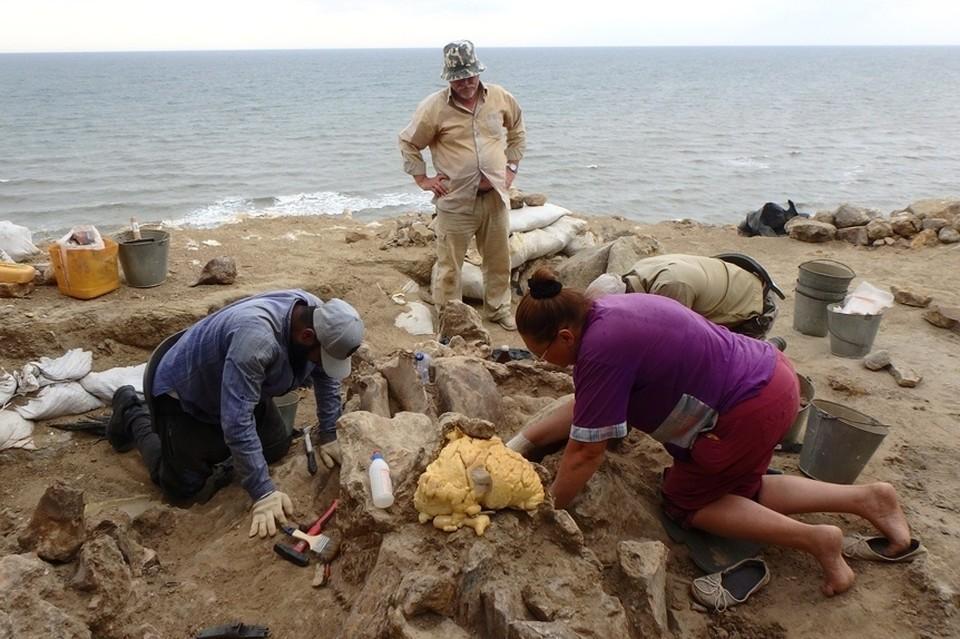 Место раскопок у берега моря Фото: Азовский музей