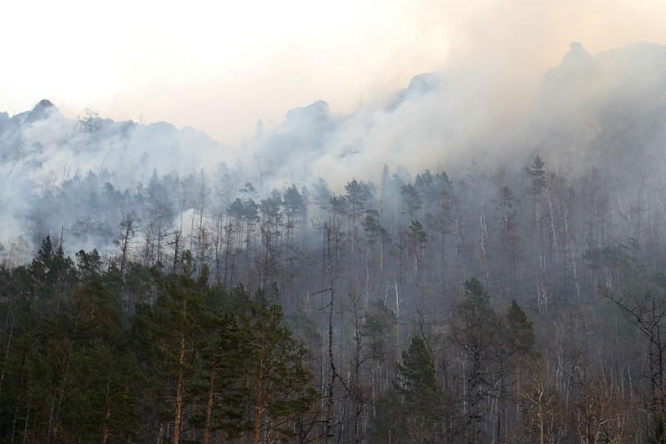 Лесные пожары в Иркутской области: горит более 50 тысяч гектаров тайги