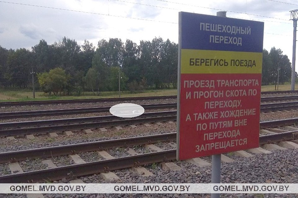 Тело погибшего было найдено рядом с настилом через железнодорожные пути. Фото: УВД Гомельского облисполкома.