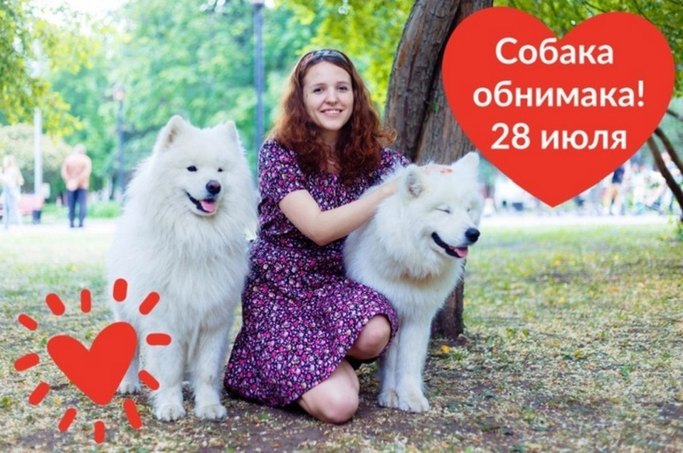 """Акция - один сплошной позитив: пермяки общаются с собаками, бездомные животные получают помощь, а фотографы могут """"набить руку"""". Фото: организаторы акции."""