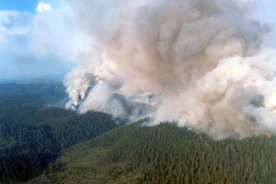 В Красноярском крае горит миллион гектаров леса. Фото: Лесопожарный центр