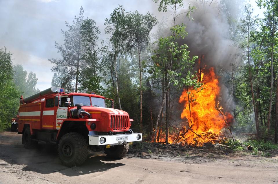 МЧС напомнило США о предложениях России помочь в тушении пожаров