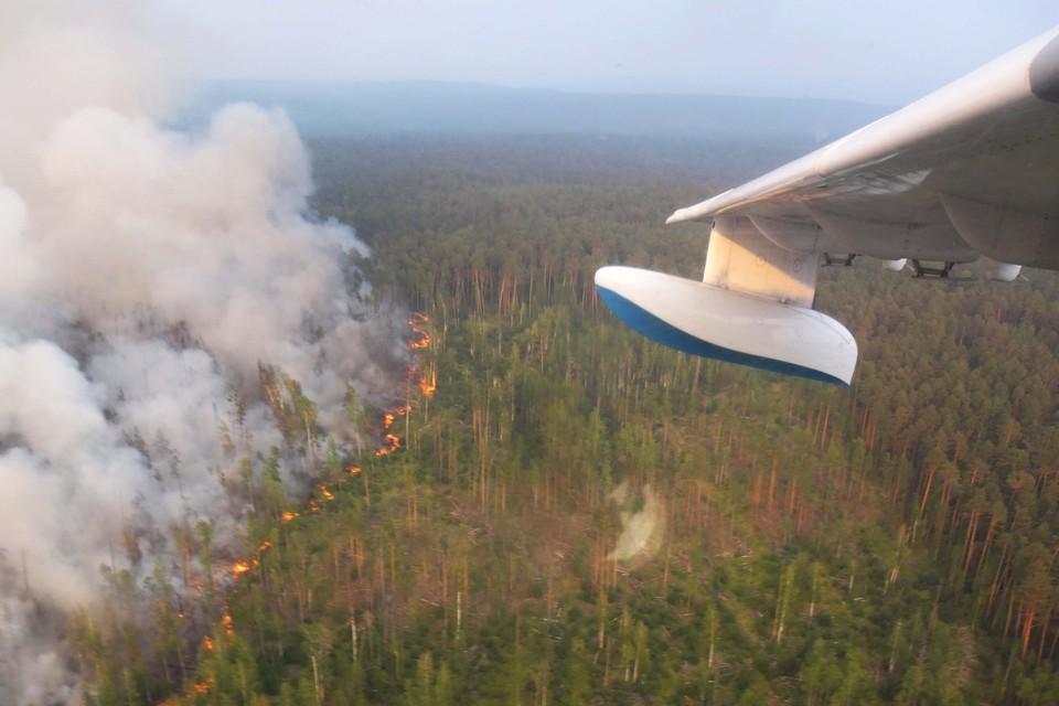 Пожары в Сибири тушит авиация Минобороны