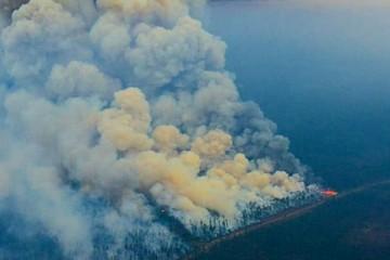 Дым от лесных пожаров, бушующих в Сибири, дошел до Арктики