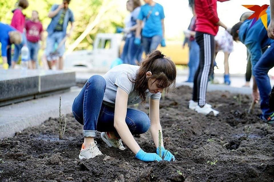 В Тверской области более 4500 подростков нашли работу летом