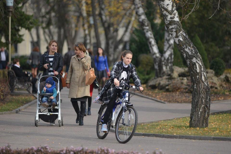 Ноябрь дарит саратовцам теплую погоду для активного отдыха