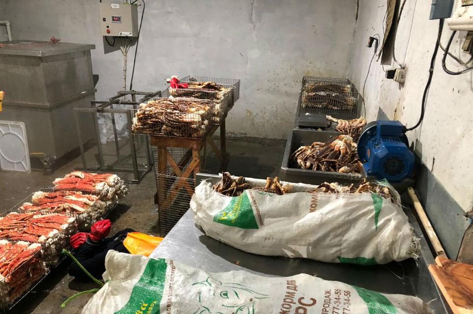 В цехе нашли почти 4 тонны краба. Фото: пресс-служба Пограничного управления ФСБ России по западному арктическому району